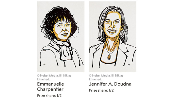 Reflections on the CRISPR journey from conception to Nobel Prize and  beyond... | Laboratory News